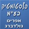 """פלסטומטיק בע""""מ - תמונת לוגו"""