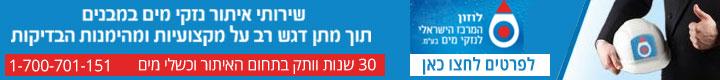 """לוזון המרכז הישראלי לנזקי מים בע""""מ"""