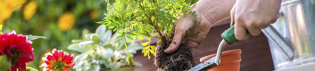 מחירון כלי גינון וציוד לגינה