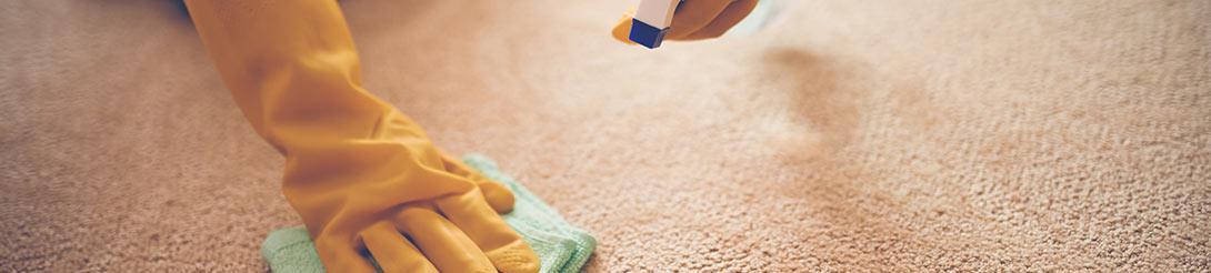 מחירון ניקוי שטיחים וריפודים