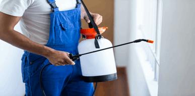הדברת מזיקים: עבודה מקצועית למקצוענים בתחום  - תמונת המחשה