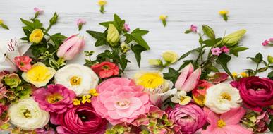 עיצוב פרחים וצמחים מלאכותיים - תמונת המחשה