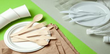 אירוח עם כלים חד פעמיים - תמונת המחשה