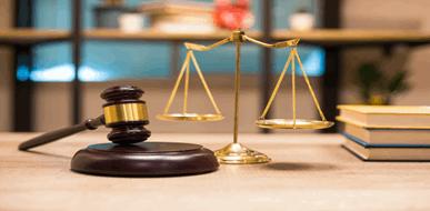 גם לאזרח יש כוח: הגשת עתירה מנהלית וניהול של משפט מנהלי  נגד גופי השלטון - תמונת המחשה