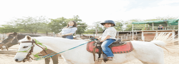 לעלות על הסוס: המדריך לרכיבה טיפולית - תמונת המחשה