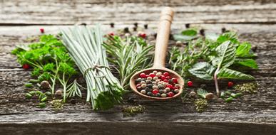 צמחי תבלין בעלי סגולות מרפא - גם טעים וגם בריא - תמונת המחשה