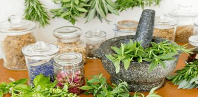 מדריך צמחי מרפא - בריאות מן הטבע  - תמונת המחשה