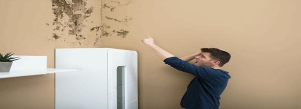 רטיבות בקיר - כיצד מגלים ואיך מטפלים?  - תמונת המחשה