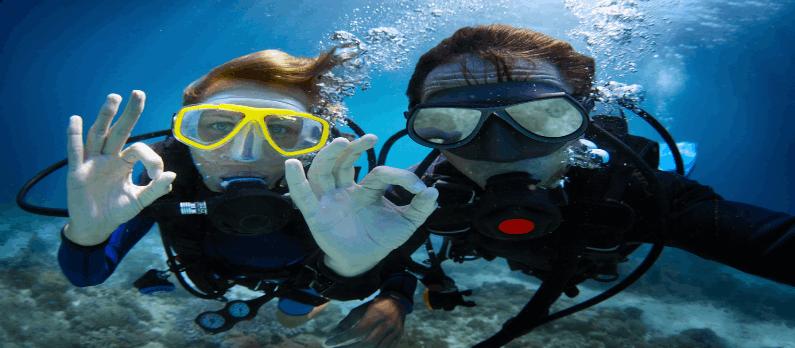 כתבות בנושא מועדוני צלילה וציוד צלילה - תמונת אווירה