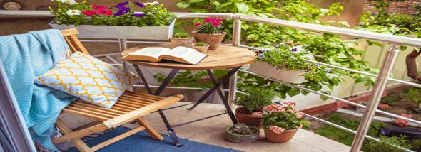 צמחים רבותיי, צמחים - המלצות לעיצוב גינה במרפסת  - תמונת המחשה