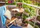 צמחים רבותיי, צמחים - המלצות לעיצוב גינה במרפסת