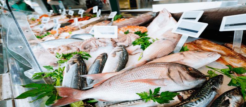 כתבות בנושא דגים למאכל - תמונת אווירה