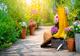 טיפים לעיצוב הגינה בעצמכם - תמונת המחשה