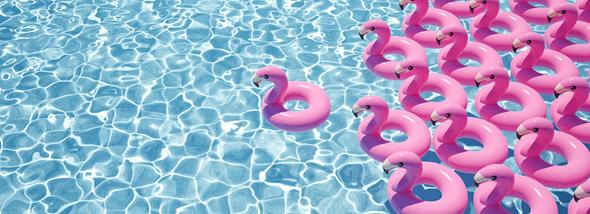 כל מה שרציתם לדעת על ציוד לבריכות שחייה - תמונת המחשה