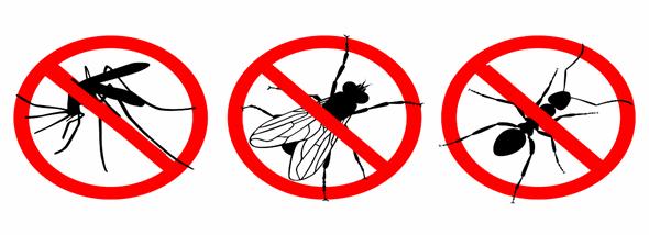 סוף עונת היתושים – המדריך המלא להתקנת רשתות - תמונת המחשה