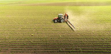 הדברה ביולוגית – לתת לטבע לעשות את שלו (גם בחקלאות) - תמונת המחשה