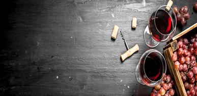 יין ישמח לבב אנוש: מדריך לבחירת יינות - תמונת המחשה