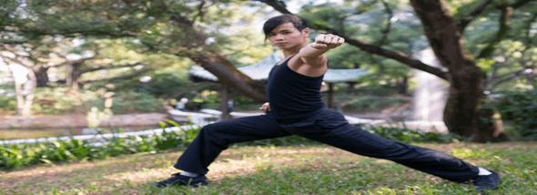 אמנות לחימה רוחנית: הכירו את הקונג פו - תמונת המחשה