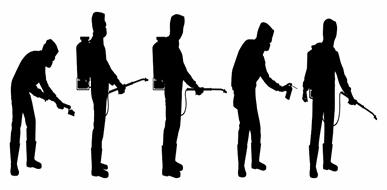הדברת צרעות – עסק למומחים בלבד - תמונת המחשה