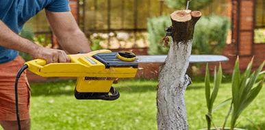 הפתרון האחרון: מתי צריך לכרות עצים - תמונת המחשה