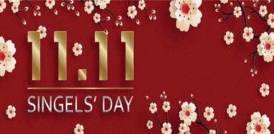 לכבוד יום הרווקים הסיני – מהם המכשירים שאתם פשוט חייבים לבית שלכם? - תמונת המחשה