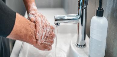 מלכודת חיידקים: כך תשמרו על היגיינה בשירותים הביתיים שלכם - תמונת המחשה
