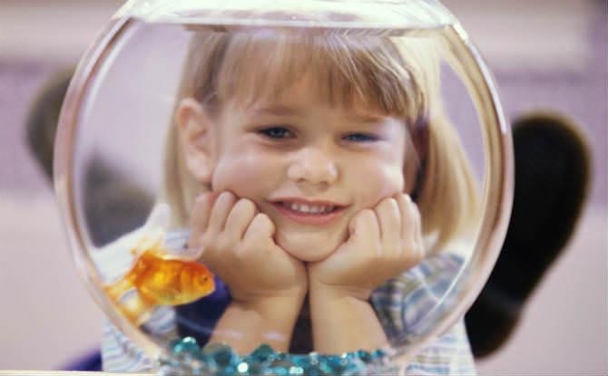 ילדה מסתכלת על אקווריום עם דג זהב