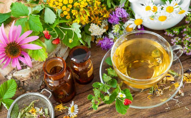 תה עם סרפד וצמחים נוספים