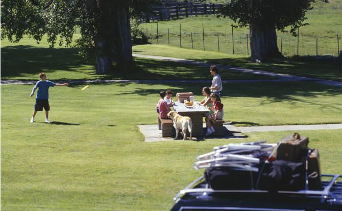 משפחה עושה פיקניק